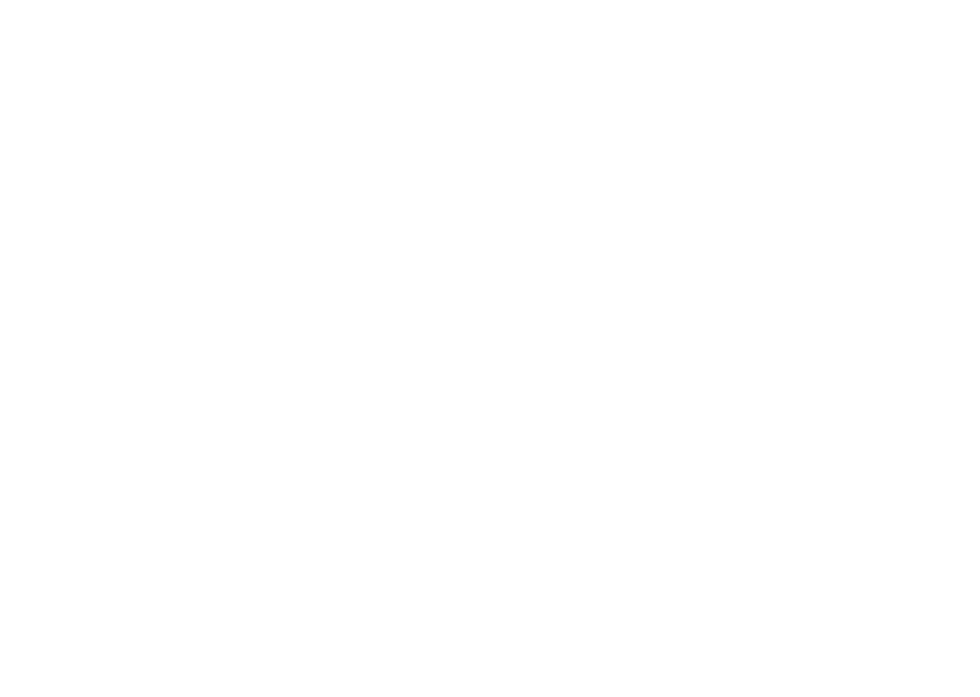 angel transport auckland